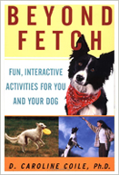 Beyond Fetch